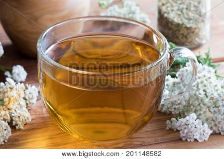 A cup of yarrow tea with fresh yarrow flowers on a wooden table