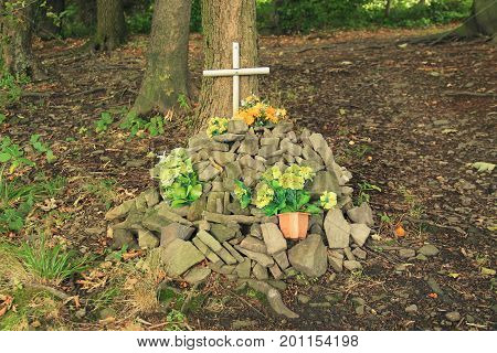 grave of a pet decorated with some flowers