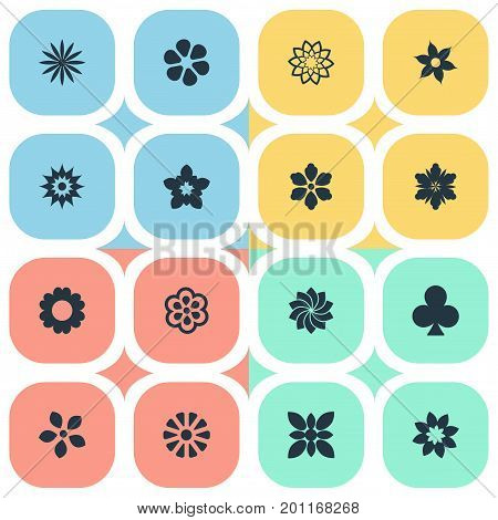 Elements Jasmine, Petal, Ornament And Other Synonyms Ornament, Glory And Crocus.  Vector Illustration Set Of Simple  Icons.