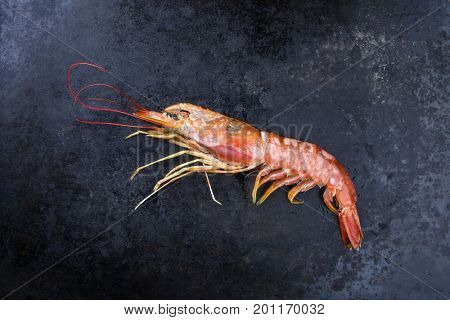 Raw black tiger prawn as top view on a black board