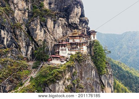 Taktshang Goemba or Tiger's Nest Monastery was blessed and sanctified as one of Bhutan's most sacred religious sites. It hangs on a cliff and stands above a forest of blue pine and rhododendrons.