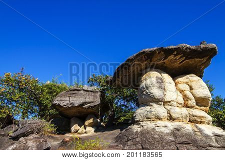 Mushroom stone beauty sunny at Phu Pha thoep National Park Mukdahan county of Thailand