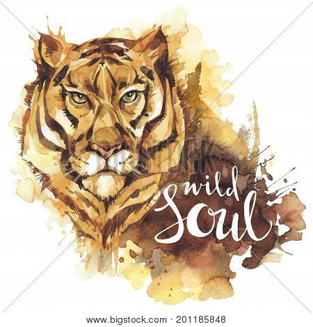 Watercolor tiger with handwritten words Wild Soul. African animal. Wildlife art illustration. Can be printed on T-shirts, bags, posters, invitations, cards, phone cases, pillows.