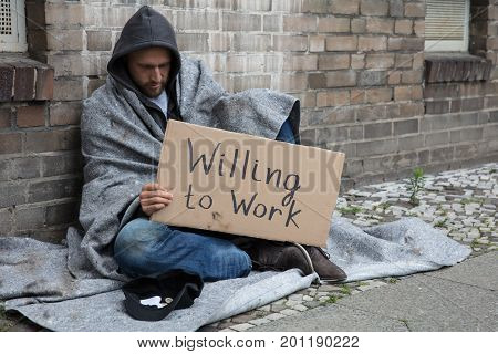 Homeless Man In Hood Sitting On Street Holding Cardboard With Text Willing To Work
