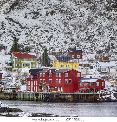 Red Wooden Traditional Huts Use Built With One End Of Pole in Water. Hamnoy and Reine Villages Houses of Lofoten Islands in Norway. Square Image
