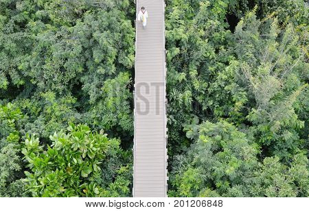blurry girl walking on wooden bridge for looking view over forest