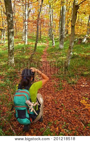 a nature woman photographer in the forest