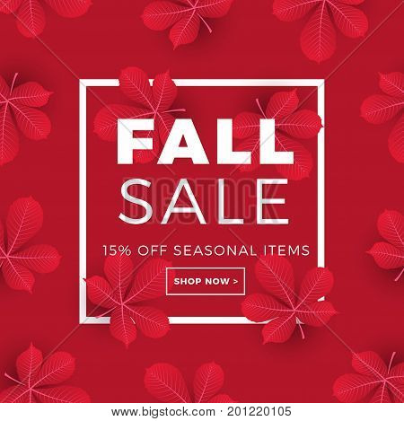 Sale Promotion Web Banner With Autumn Background. Promo Fall Season Discount Layout With Chestnut Le