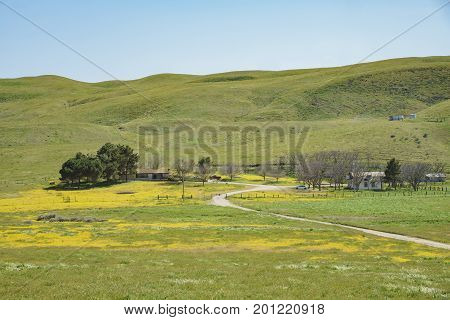 House With Goldfields And Mountain