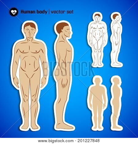Human male naked body flat set in front and side view isolated on blue background vector illustration