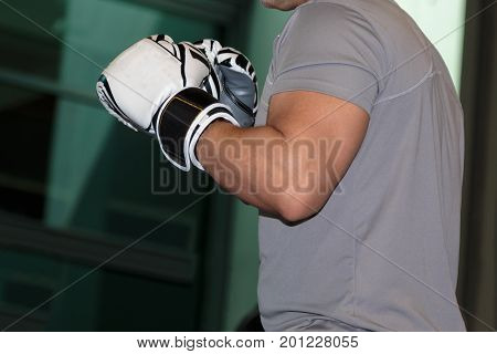 Pugilist with White Gloves indoor Boxe, Sport Theme