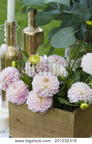 Ornamental plants and objects for a wedding decoration