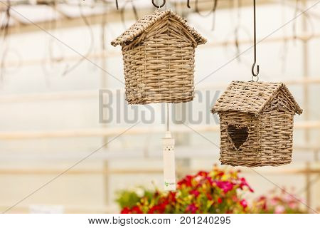 Animal house taking care concept. Hanging under ceiling wicker houses for birds