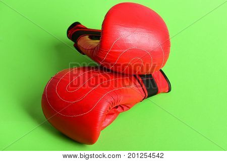 Sport Duet Of Red Gloves For Professional Boxing