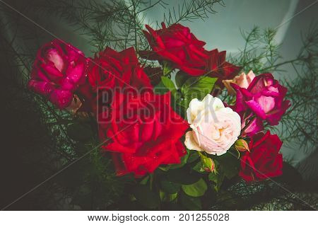A Bouquet Of Beautiful Fresh Red And White Roses
