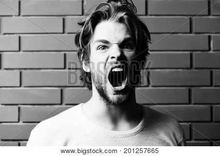 Brutal Macho Man With Beard, Messy Hair And Mad Expression