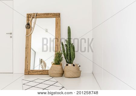 Enormous Mirror In The Room