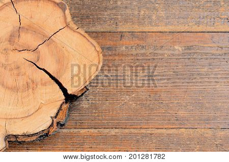 Tree stump on a wooden background with copy space for text. Wooden texture background. Tree cross section. Top view