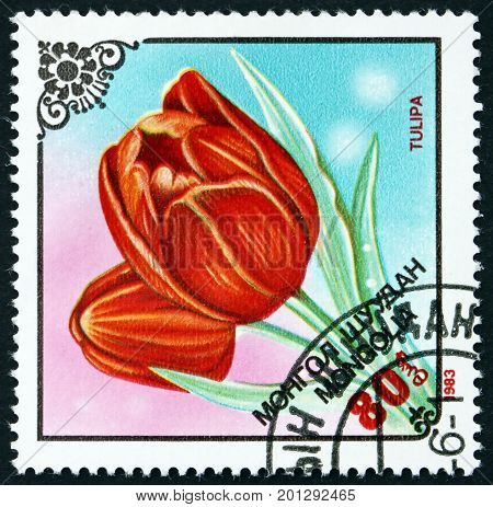 MONGOLIA - CIRCA 1983: a stamp printed in Mongolia shows Flower of Tulip Flowering Plant circa 1983