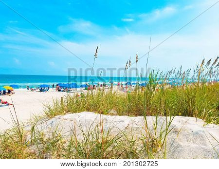A beautiful beach view of vacationers on the shore near grassy sand dunes.
