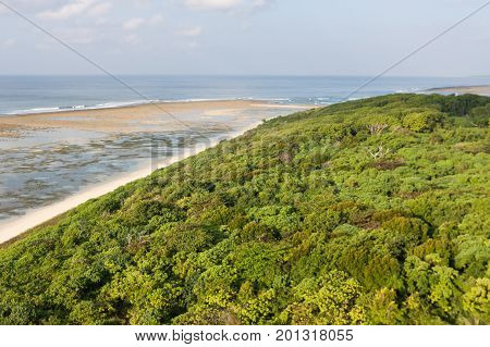 Aerial Jungle Landscape On Little Andaman Island, Andamans, India. Aerial View Of Jungle Seascape On