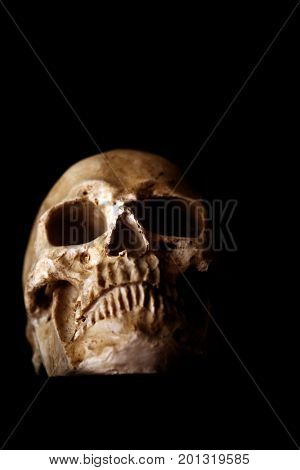 Halloween Skull. Spooky Halloween Skull isolated on black. Scary Halloween with room for text. Human Skull. Human Head