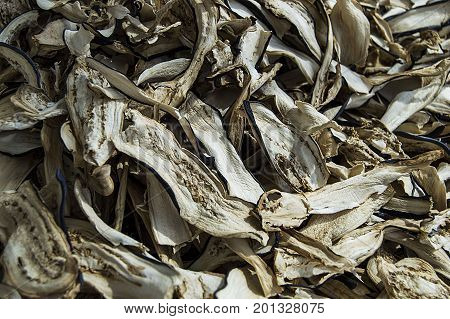 Dry foods, vegetable dry, aubergine dry pictures, vegetable dry for health,