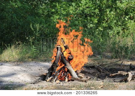 Hot flames of camp fire in sunny green forest