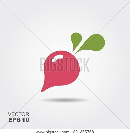 Radish flat icon vector, colorful logo illustration with the shadow isolated on white