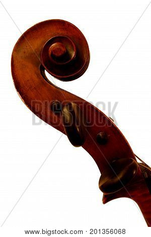 Top of Violoncello on White Background Close-up