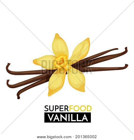 Vanilla vector icon. Healthy detox natural product superfood illustration for design market menu superfood .