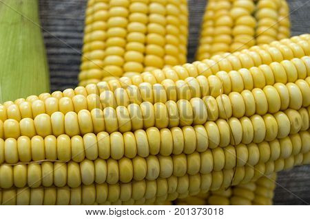 Grains of ripe corn. An ear of corn isolated. Corn on the cob, meal ripe juicy tasty corn. Photo of corn background.Fresh young sweet corn on cobs, closeup. Freshly picked ears of corn in bunch. Golden corn kernels.