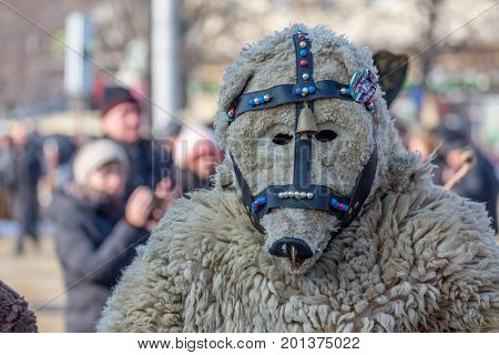 PERNIK, BULGARIA - JANUARY 27, 2017: Young masked man is participating in evil chasing ritual at Surva, the International Festival of the Masquerade Games