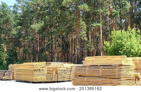 Wooden boards stacked in stacks. Green pine forest in the background