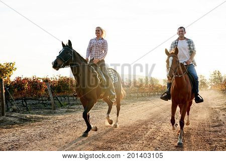 Smiling Couple Galloping On Horseback Through An Autumn Vineyard