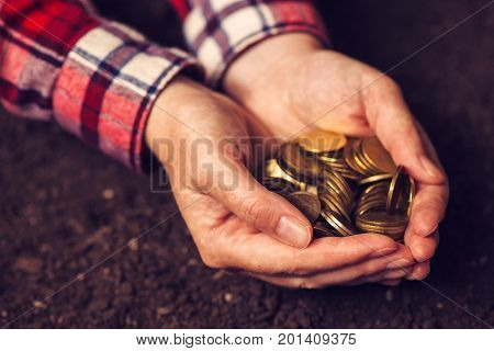 Agricultural productivity money yield and income after crop harvest female farmer and agronomist with handful of golden coins