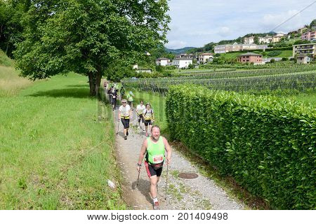 People During The Walking Contest Of Mendrisio On Switzerland