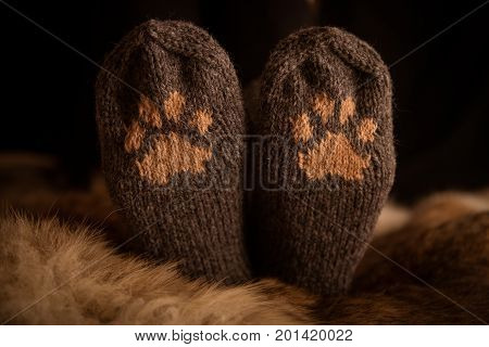 Pair Of A Hand Knitted Woolen Socks With A Cat Paw Pattern On Fur Background