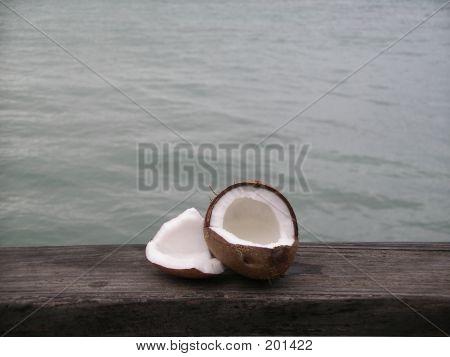 Coconut In Dominican Republic