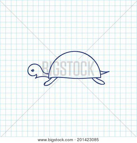 Vector Illustration Of Zoology Symbol On Turtle Doodle
