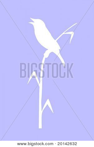vector drawing of the bird sitting on reed