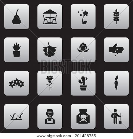 Set Of 16 Editable Planting Icons. Includes Symbols Such As Seed Planting, Watering, Blackberry And More