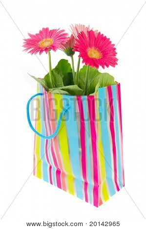 Colorful Gerber flowers in cheerful striped bag