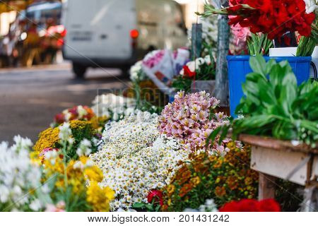 Many flowers in Outdoor flower market on sunny street