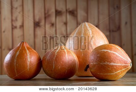Row Of Pumpkins On A Table