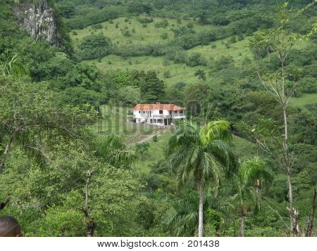 House In The Tropic