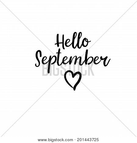 Hello September. Modern calligraphy. Autumn greeting card, postcard, poster, banner template. Vector illustration. Handwritten brush text. Isolated on white background.
