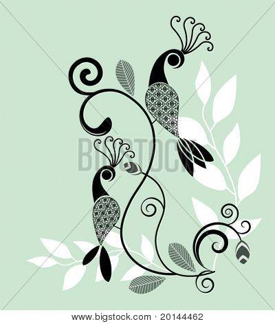Beautiful peacocks