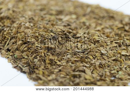 extreme close up in a selective view on dried natural unprocessed tobacco leaves on a white background burred to add copy space