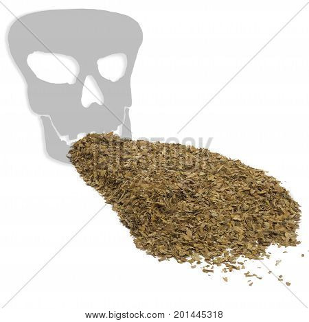 square image concept health warning smoking kills showing unprocessed dry tobacco leaves with a death skull shadow on a white background